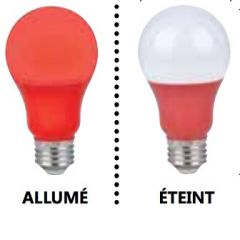 29004 - Ampoule A19 Del rouge